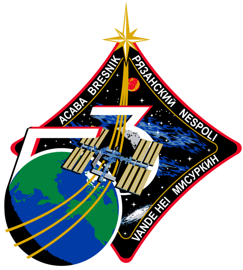 808px-ISS_Expedition_53_Patch.png