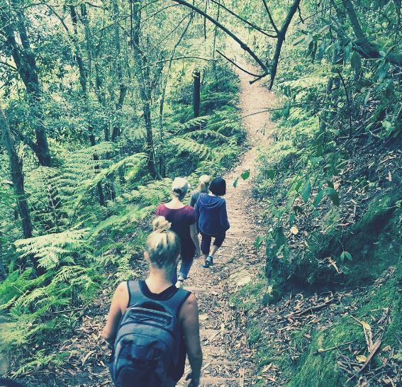Blue Mountains Private Tour Walk