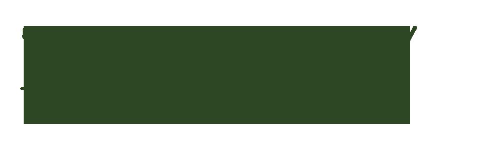 The Nest Workshop logo green.png
