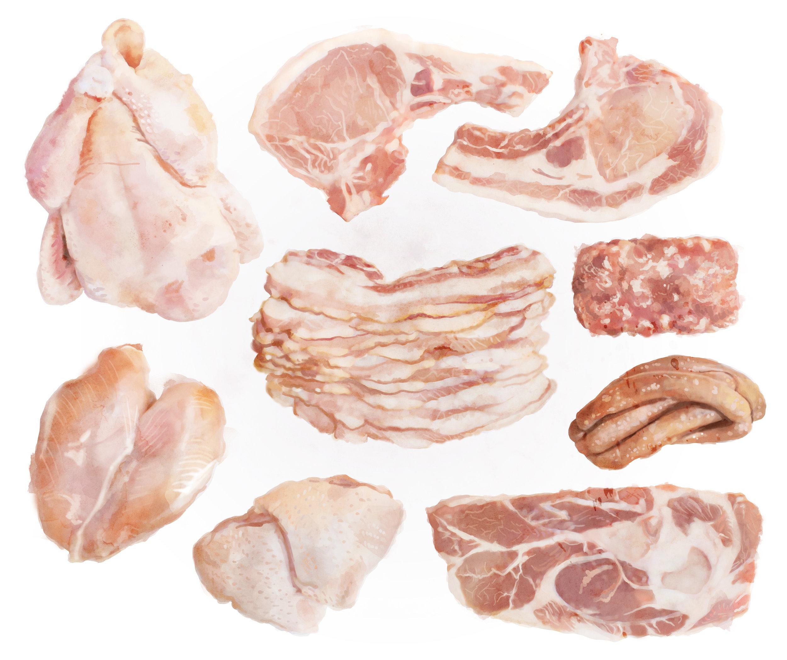 pork & chicken box illustration.jpg