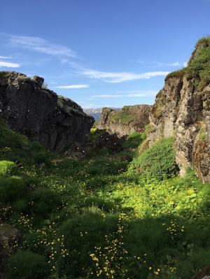 Thingvellir, where Gunnar first met Halgerd (R. Fidler).