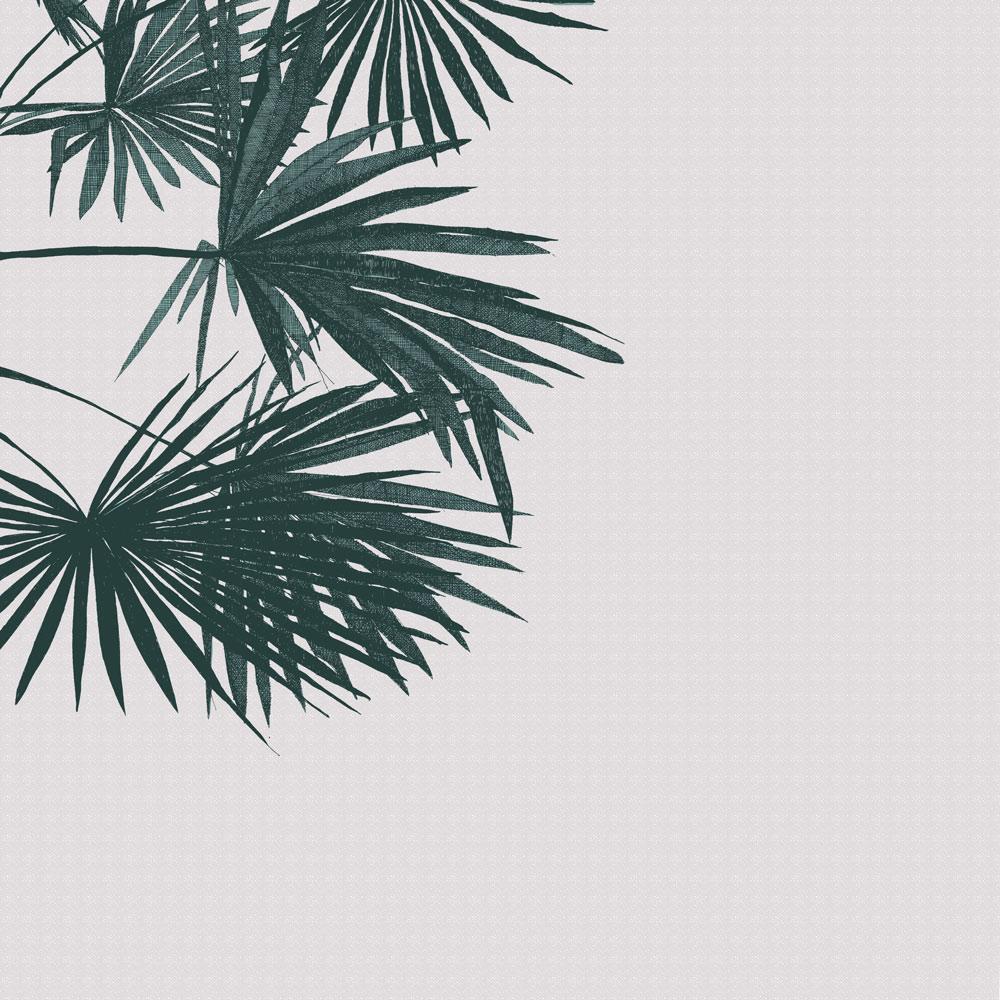 Clare-Halifax-Criss-Cross-Palm.jpg