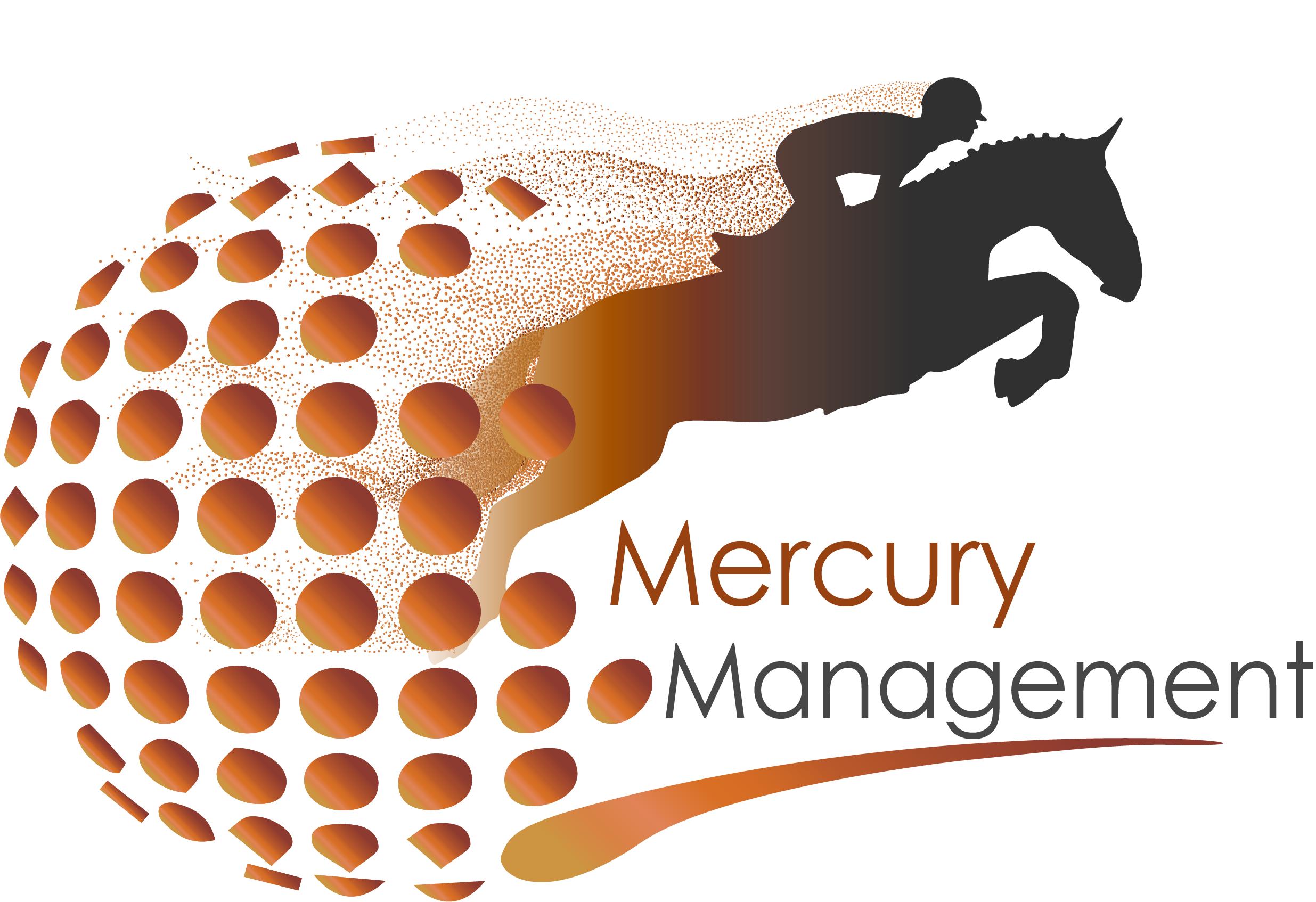 MercuryManagement_orange_steel_fadeFINAL.png