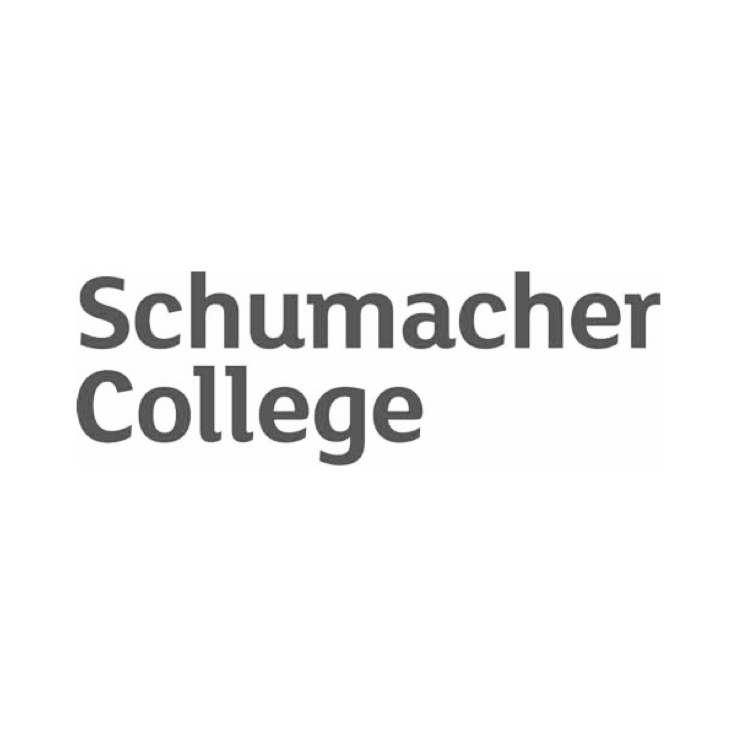 Scholarship - Natural Build Course