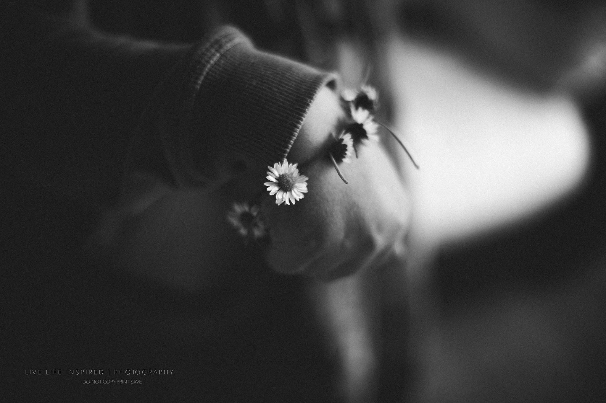 Daisy chains.
