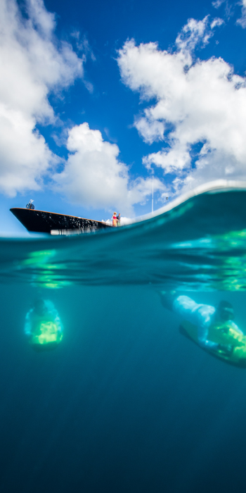 Bacchus-Charter-Vacations-Blog-Underwater.jpg