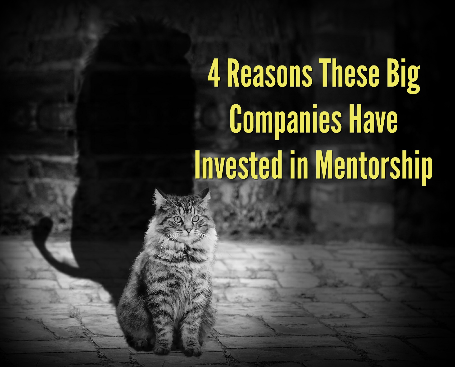 4 Reasons These Big Companies Have Invested in Mentorship.jpg