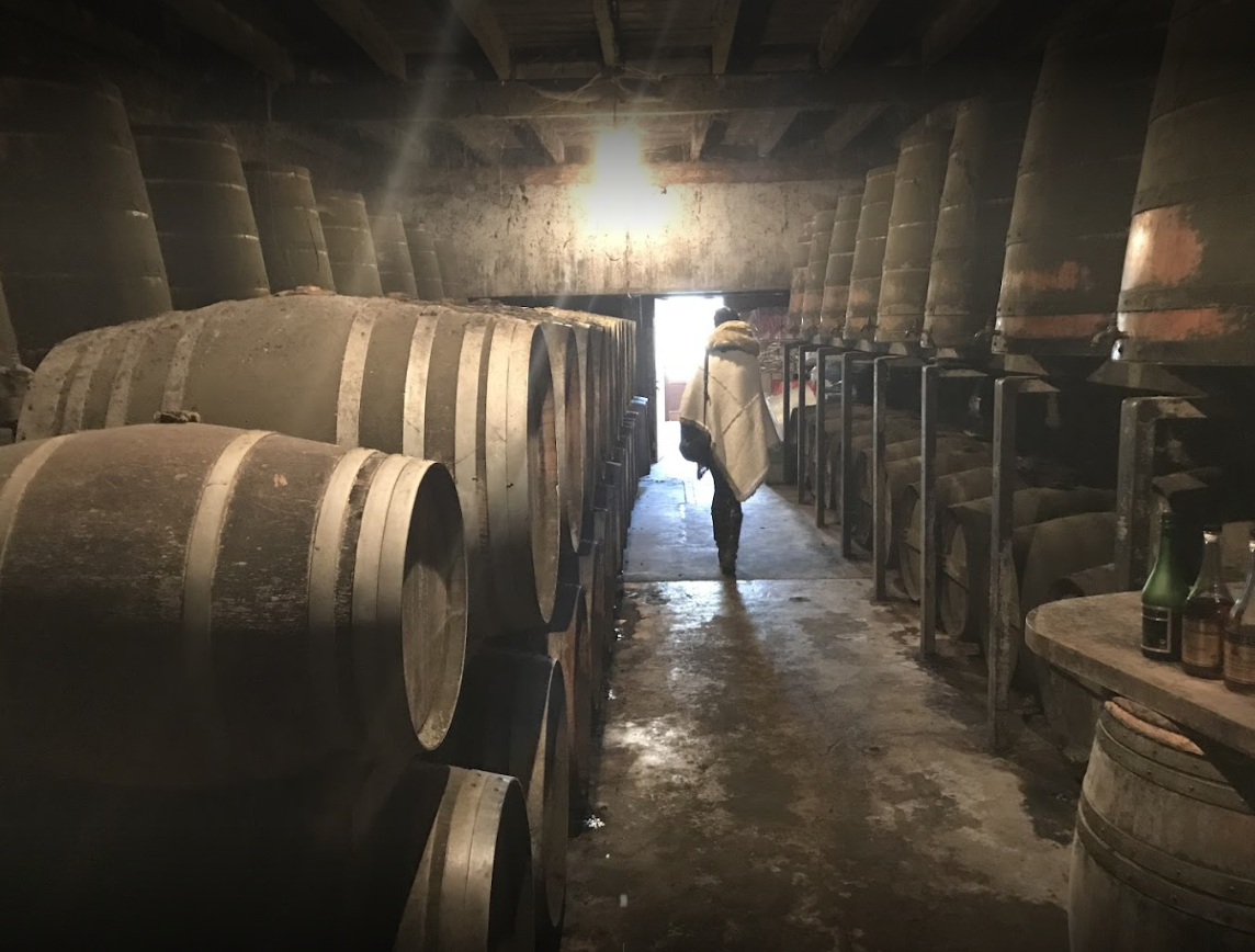 These are some of Jean Balluet's barrels maturing Cognac. The tour is free, the tastings are free. Cash is king.