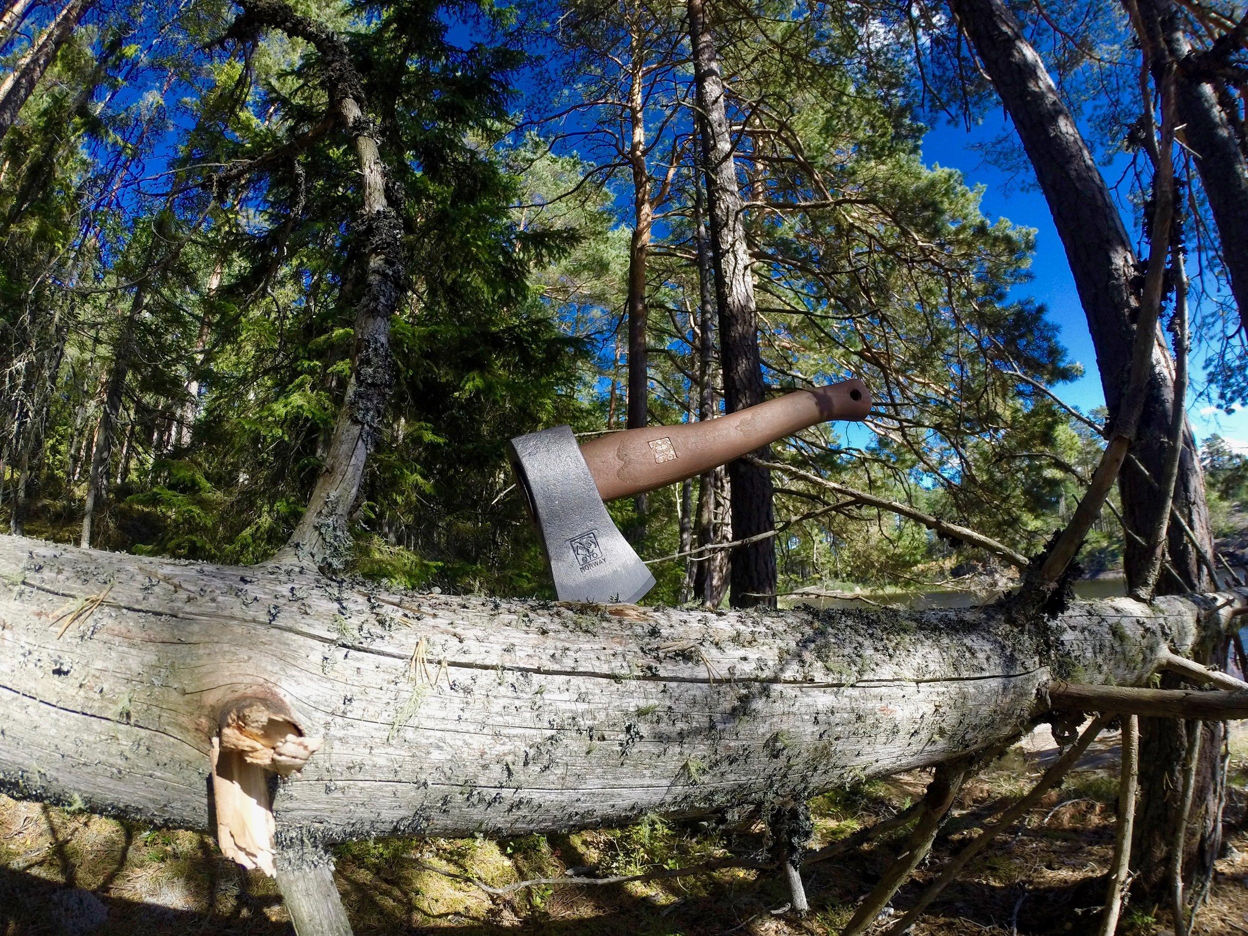 true nature sweden survival course in stockholm.jpg