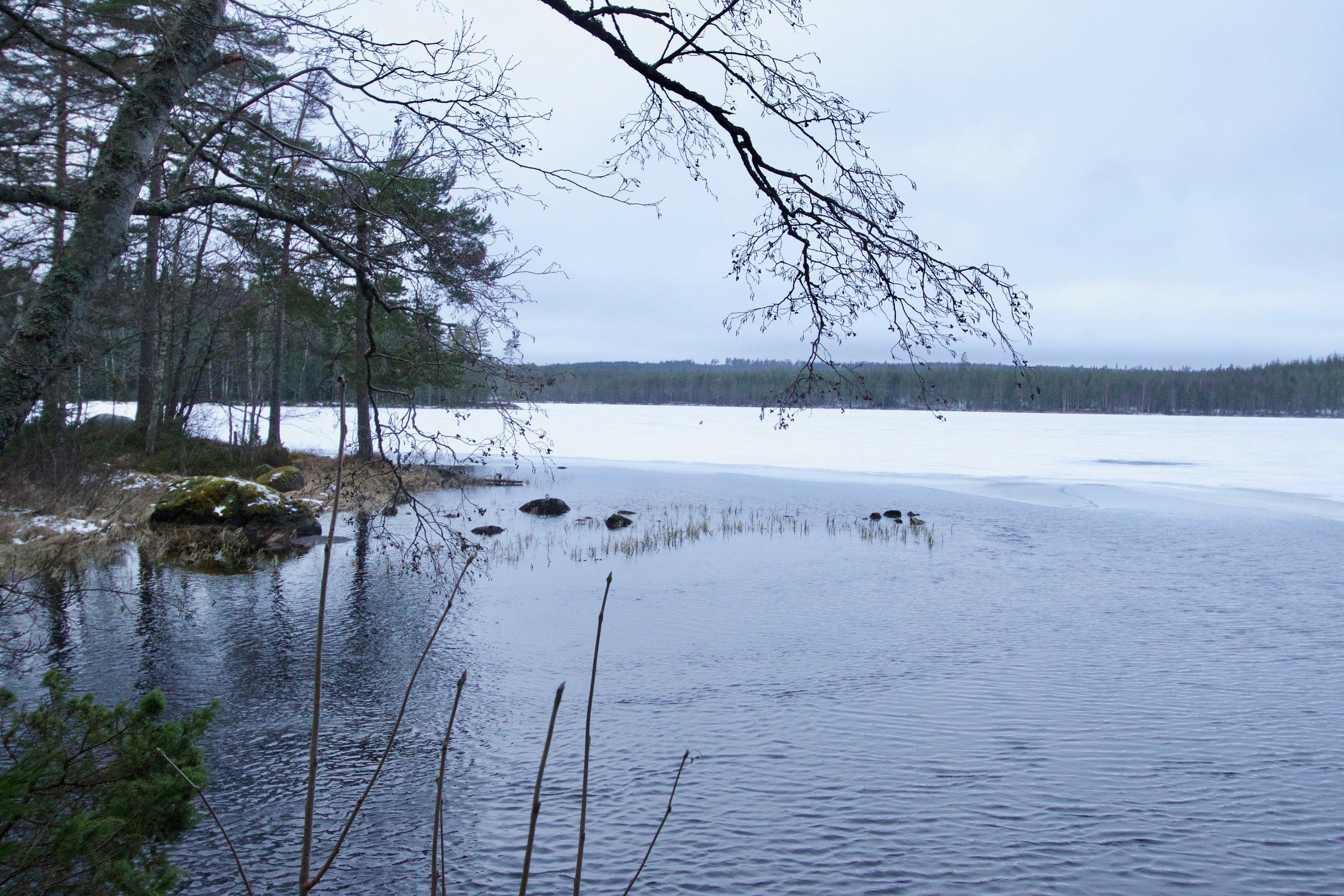 stockholm nature tours
