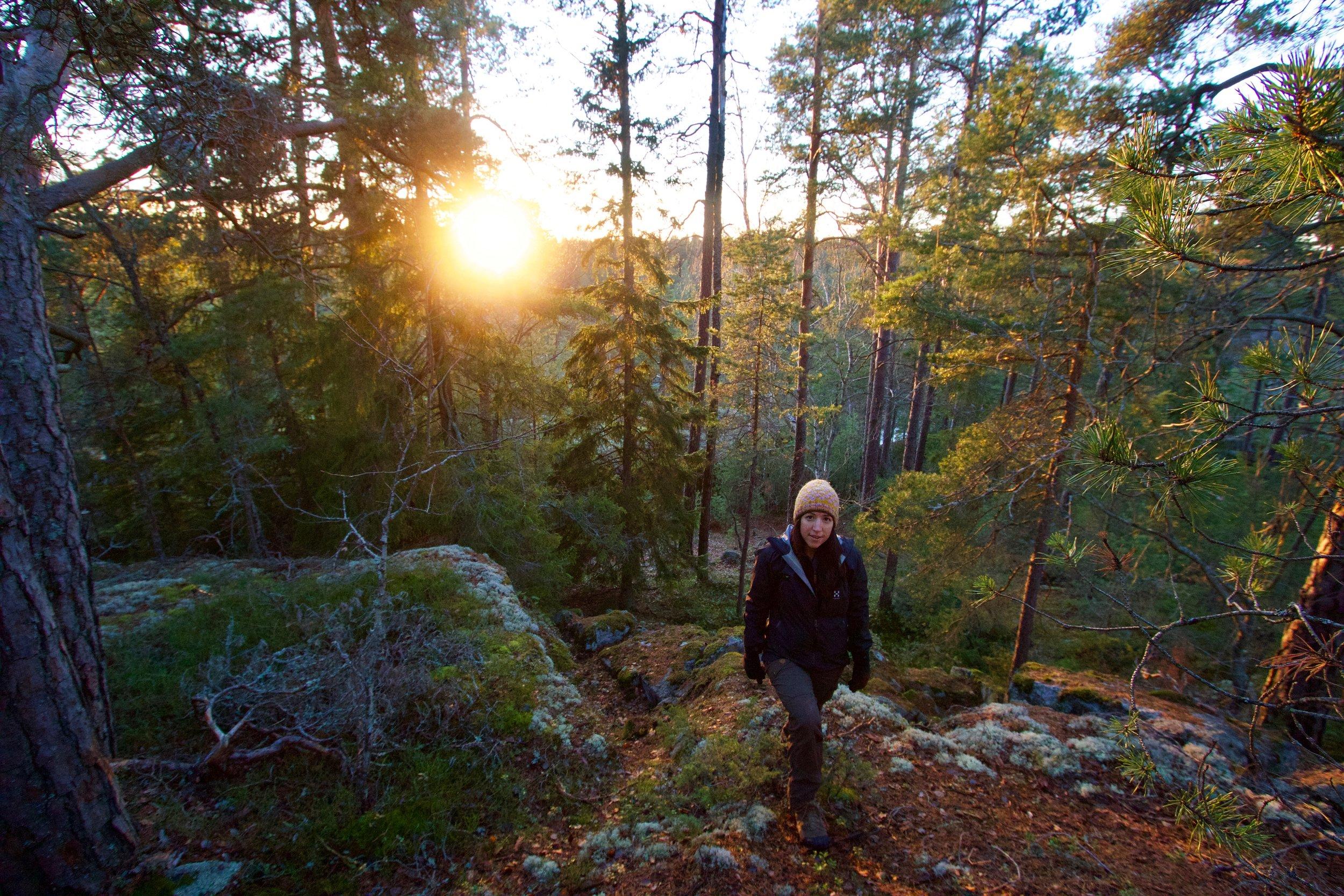 stockholm hiking outdoor tours.jpg