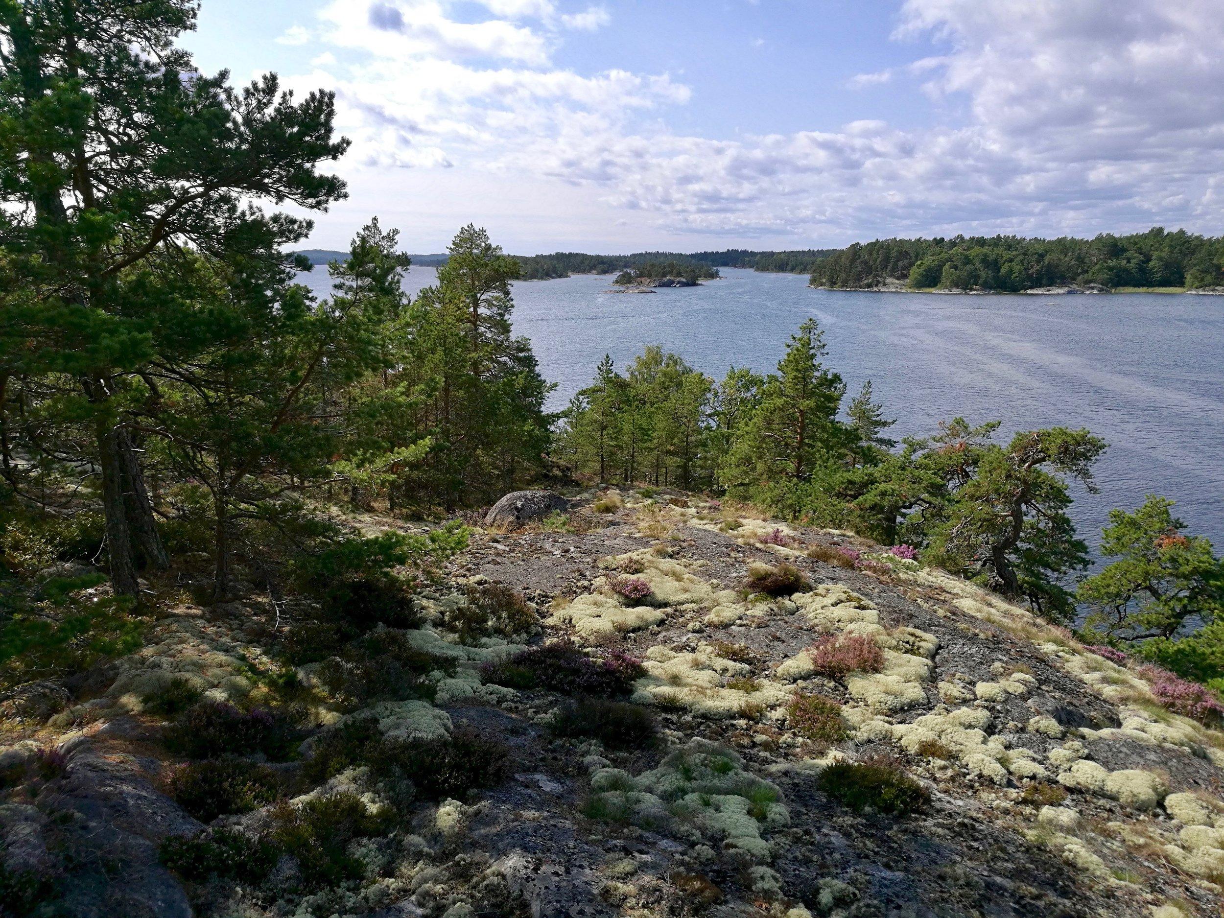 Stockholm Archipelago Kayaking 1 day 9