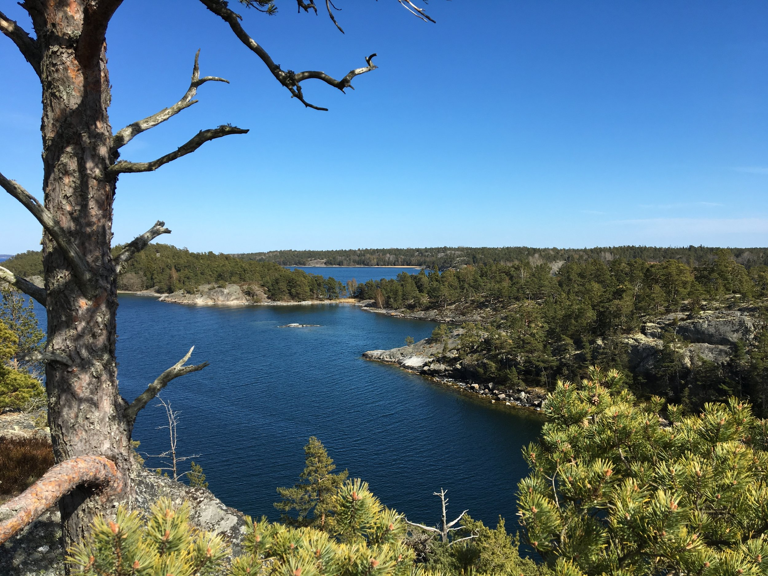 Stockholm Archipelago Kayaking Guided Tours 3 days 3