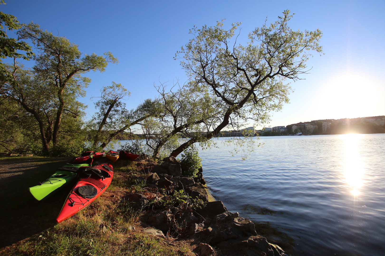 Kayaking in Stockholm City - Guided Stockholm Tours