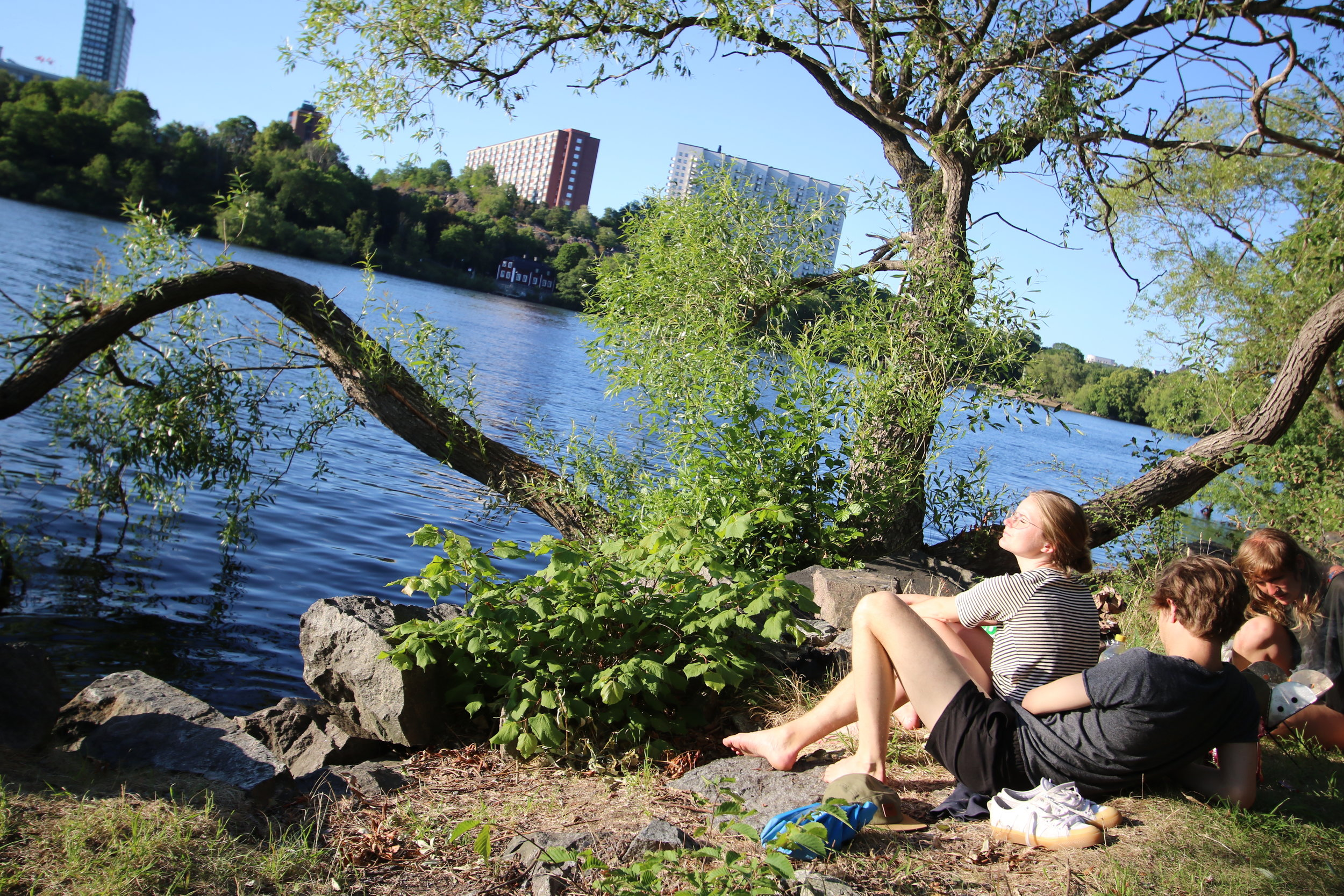 Kayaking in Stockholm City - Guided Stockholm Tours 6