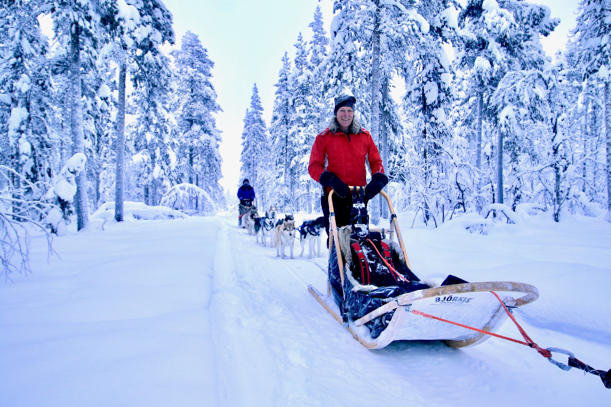 5-days Husky Experience Pure Sensations - Go for a unique trip in north, in the middle of Lapland, the northernmost part of Sweden. Polar winter is a magical spectacle with endless nights lit by the stars and the white of the snow reflecting the pastel colors of the northern lights.