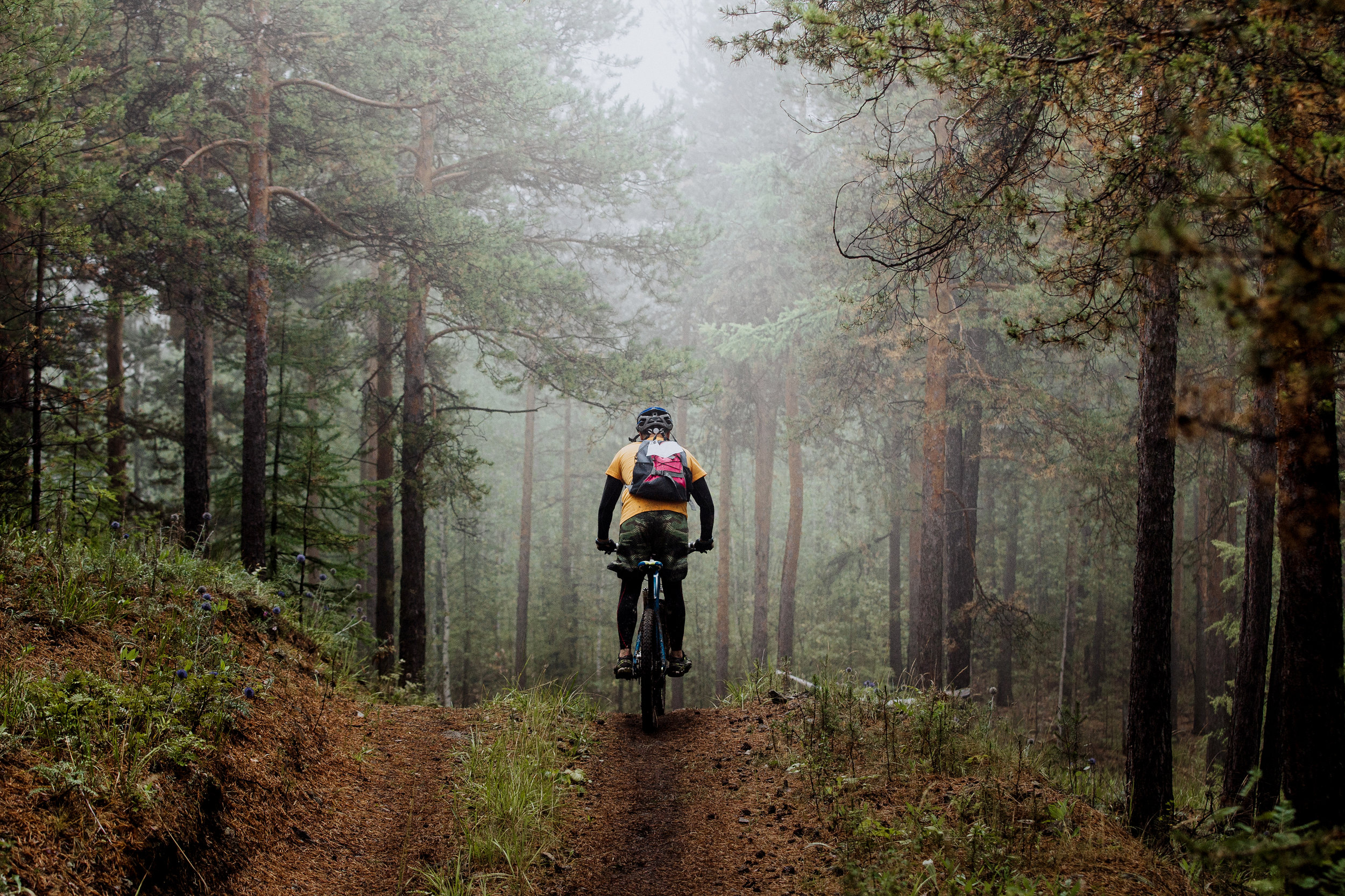 MTB_True_Nature_Sweden.jpg