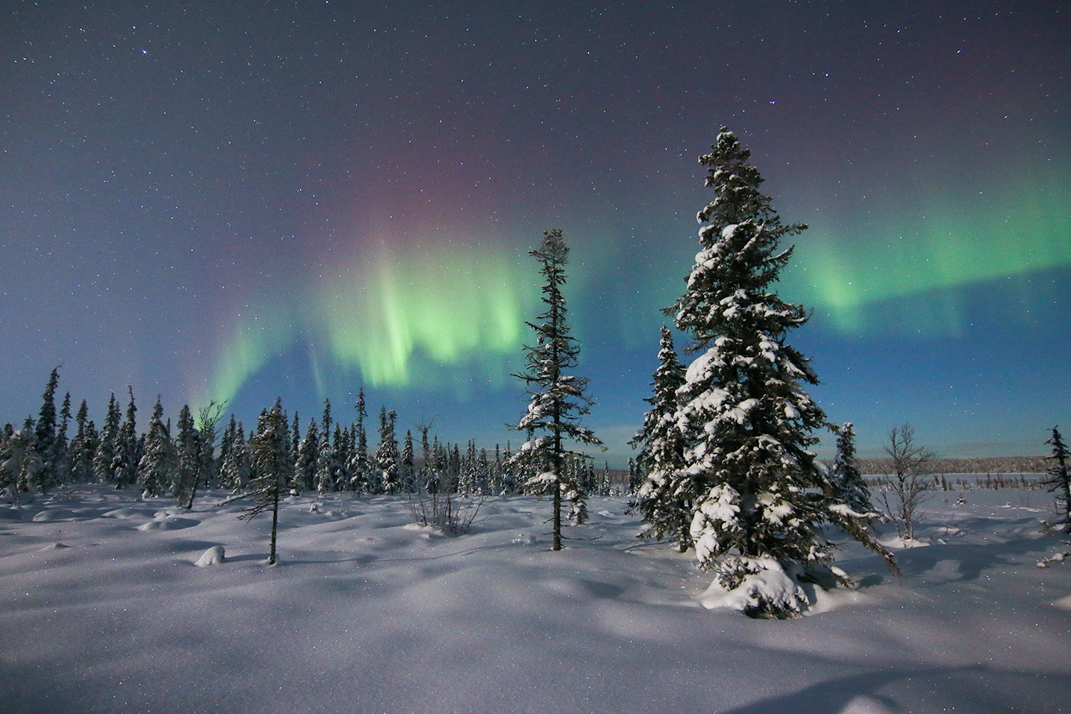 Northern Lights Lapland Tours Sweden Guided Tours 7