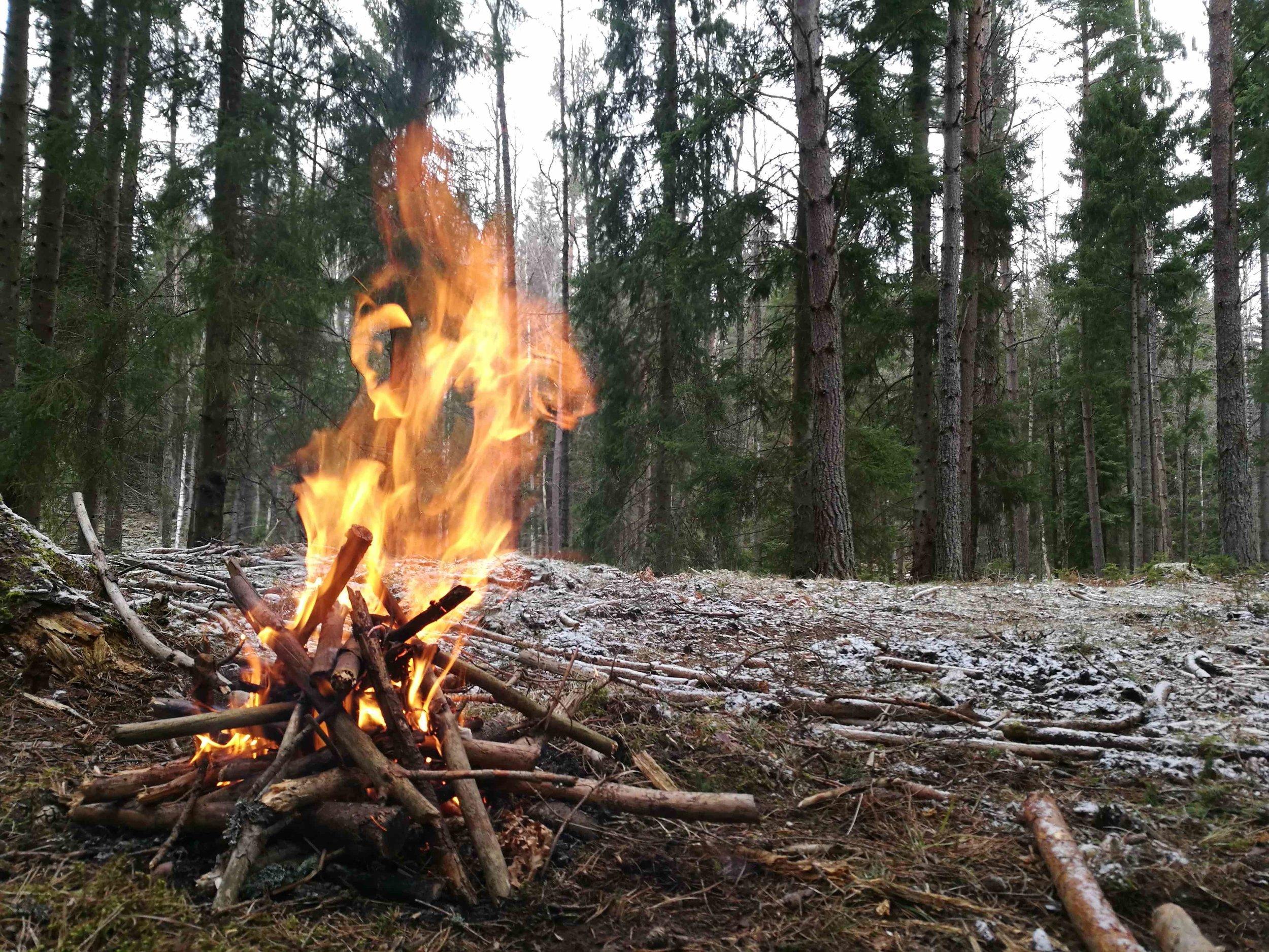 Företagsevent i Stockholm Kickoff, fest och teambuilding  true nature sweden