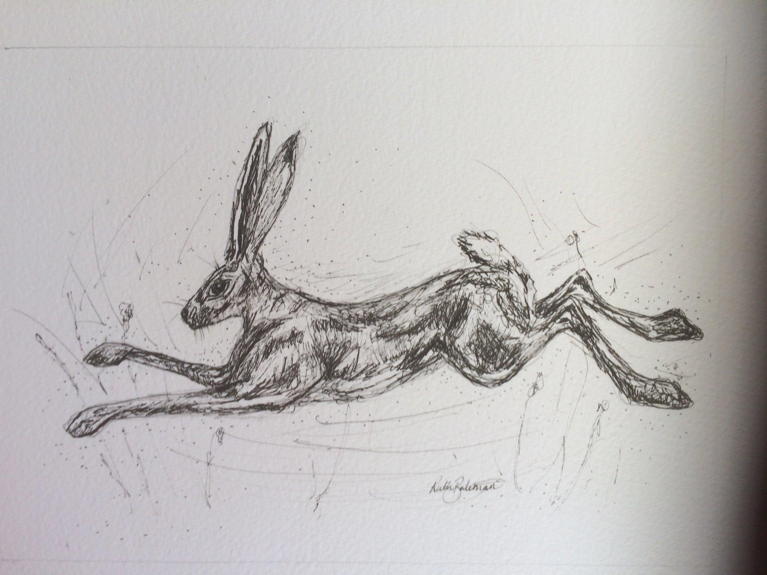 Run Hare Run.jpg