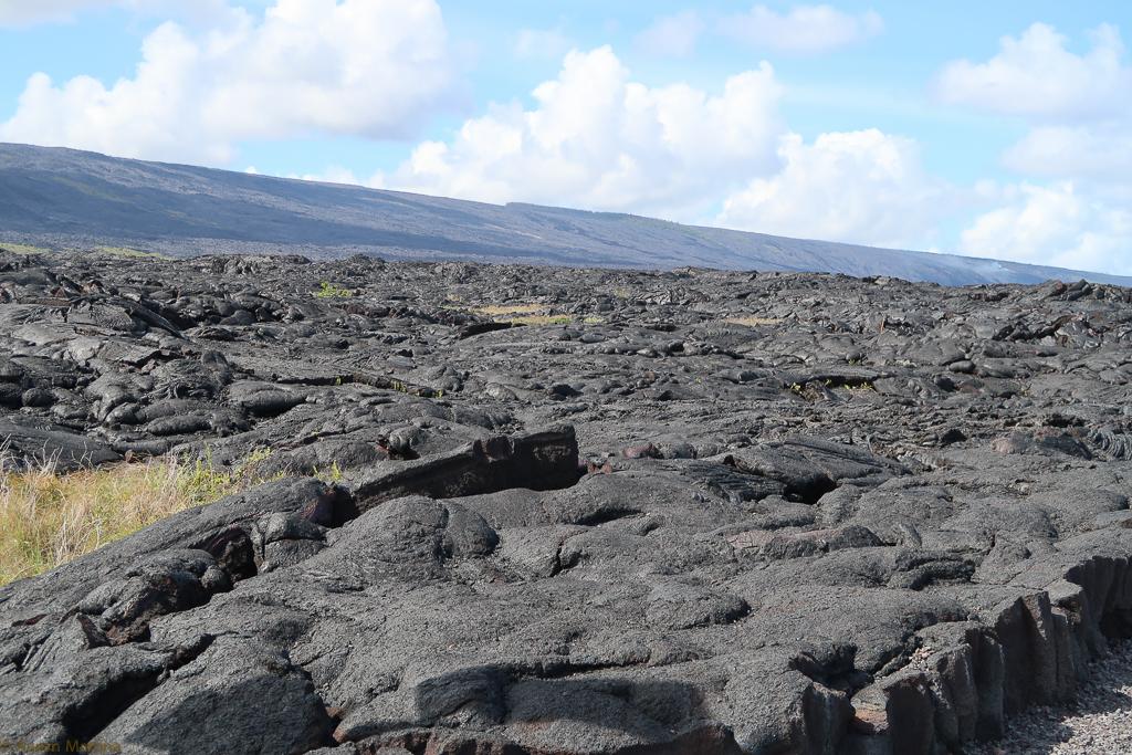 An ocean of lava rock