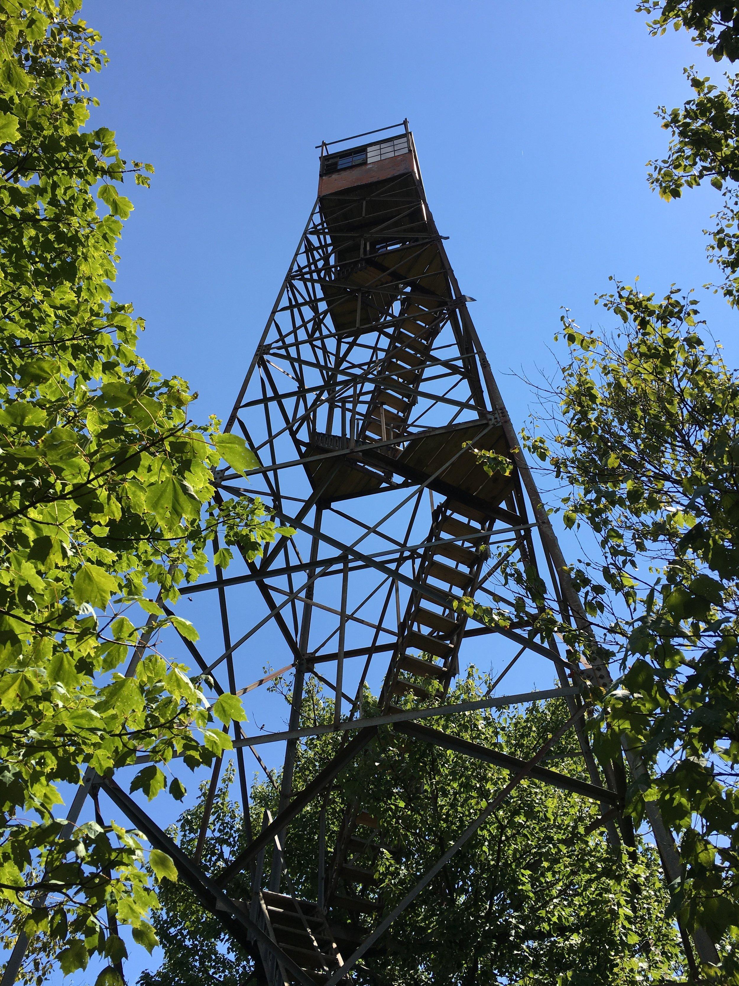 Shuckstack Fire Tower
