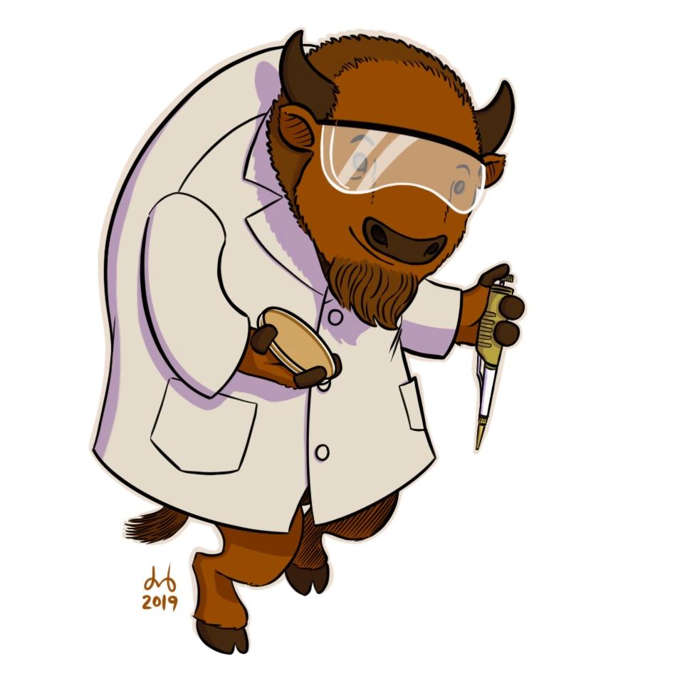 Brown Bison Biologist