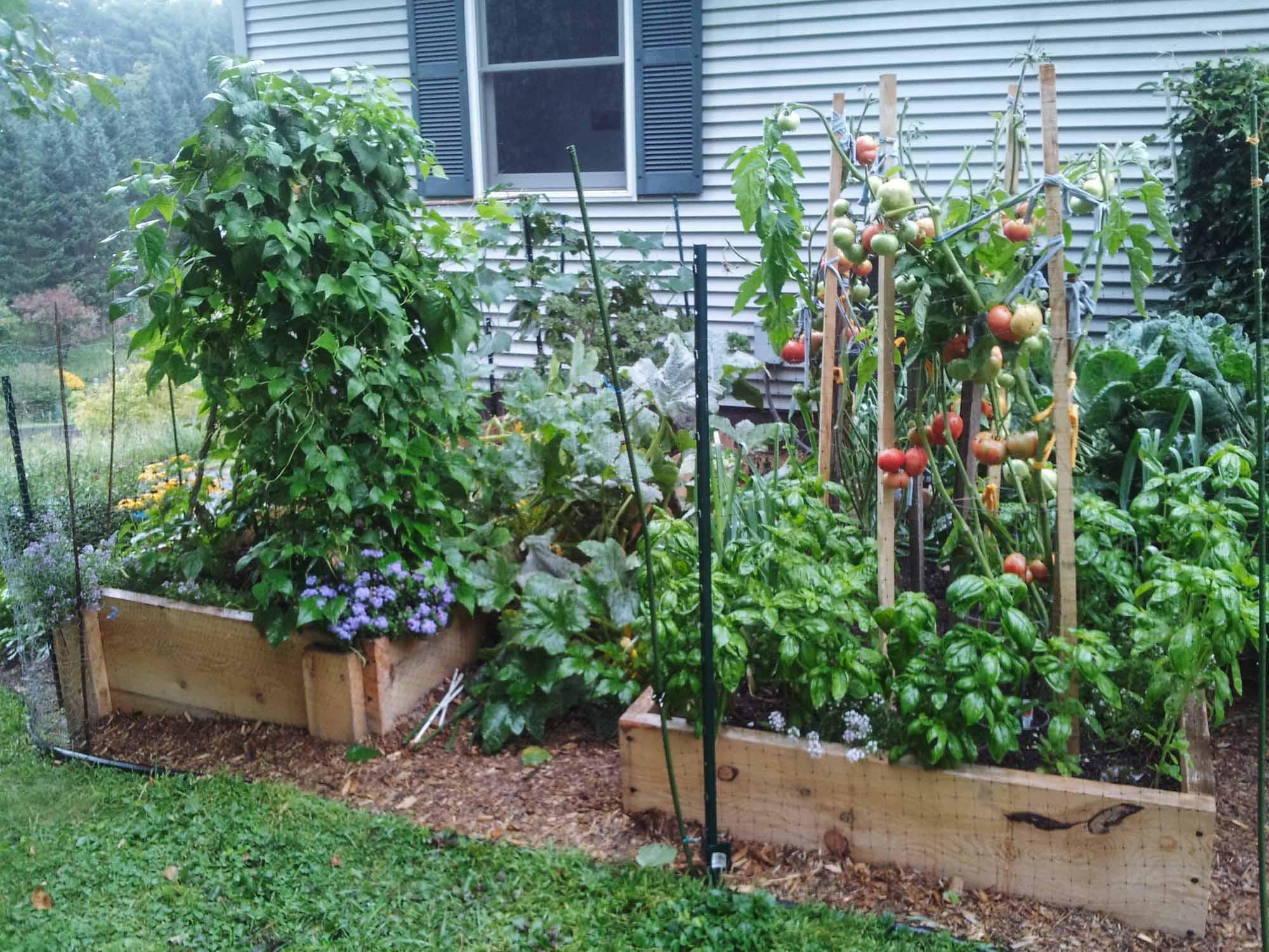 Raised-vegetable-beds-Portfolio.jpg