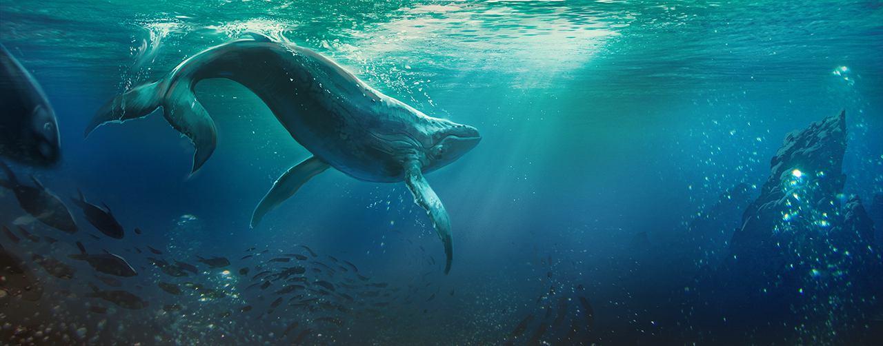 07_IMG_4153 Whale Chase-WEB.jpg