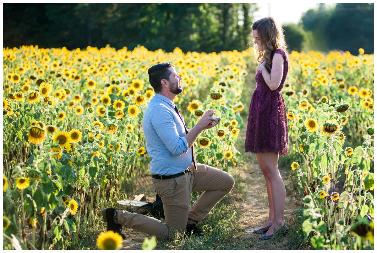 Best surprise of my life! Derek blindfolded me and took me to a sunflower field. (sunflowers are my favorite) There he asked me to be his wife! And of course, I said yes!!