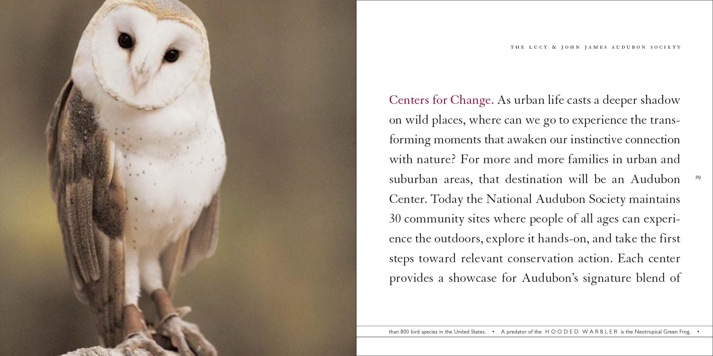 audubon_case-16.jpg