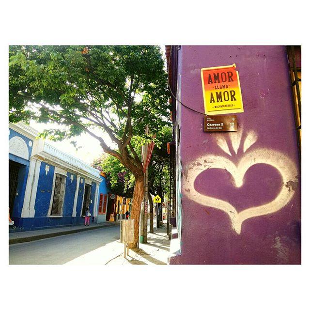 Reportando con mucho amor desde las calles samarias: ¡Feliz lunes viajeros! 💚☀ #amorllamaamor @macondoherald ° ° ° ° ° ° ° ° ° Planea tu viaje con nosotros, ¡contáctanos! 📞+57 3203644260, +57 (5) 4207305 📩 mulatahostelcolombia@gmail.com ° ° ° ° ° #monday #streetart #love #amor #yovoy #traveltip #hostels #santamarta #backpacking #hostelife #loveandtravel #chillculturalandfun #tourism #travel #caribbean #destinations #colombianhostels #santamartaiscrazy #samaland #santamartacultural #santamartainforma  #naturalmentemágica #bahia #samaland #turismo #viajes #mochilero #colombia #viajero #lunes