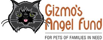 Kind and compassionate veterinarian