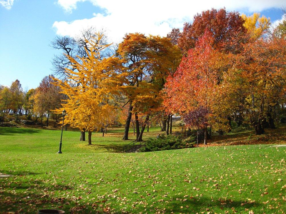 St Nicholas Park Halrem New York City