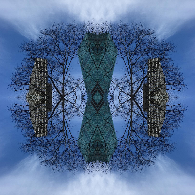 Tree Network