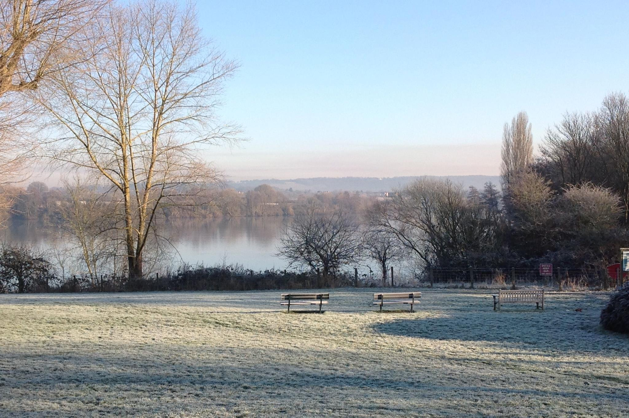 Picture Lake Frost.jpg