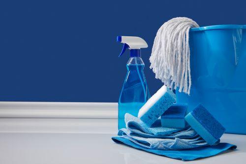 Cleaning Edited.jpg