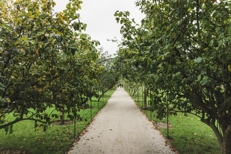 Fulham Palace Gardens_London_Tripp Films