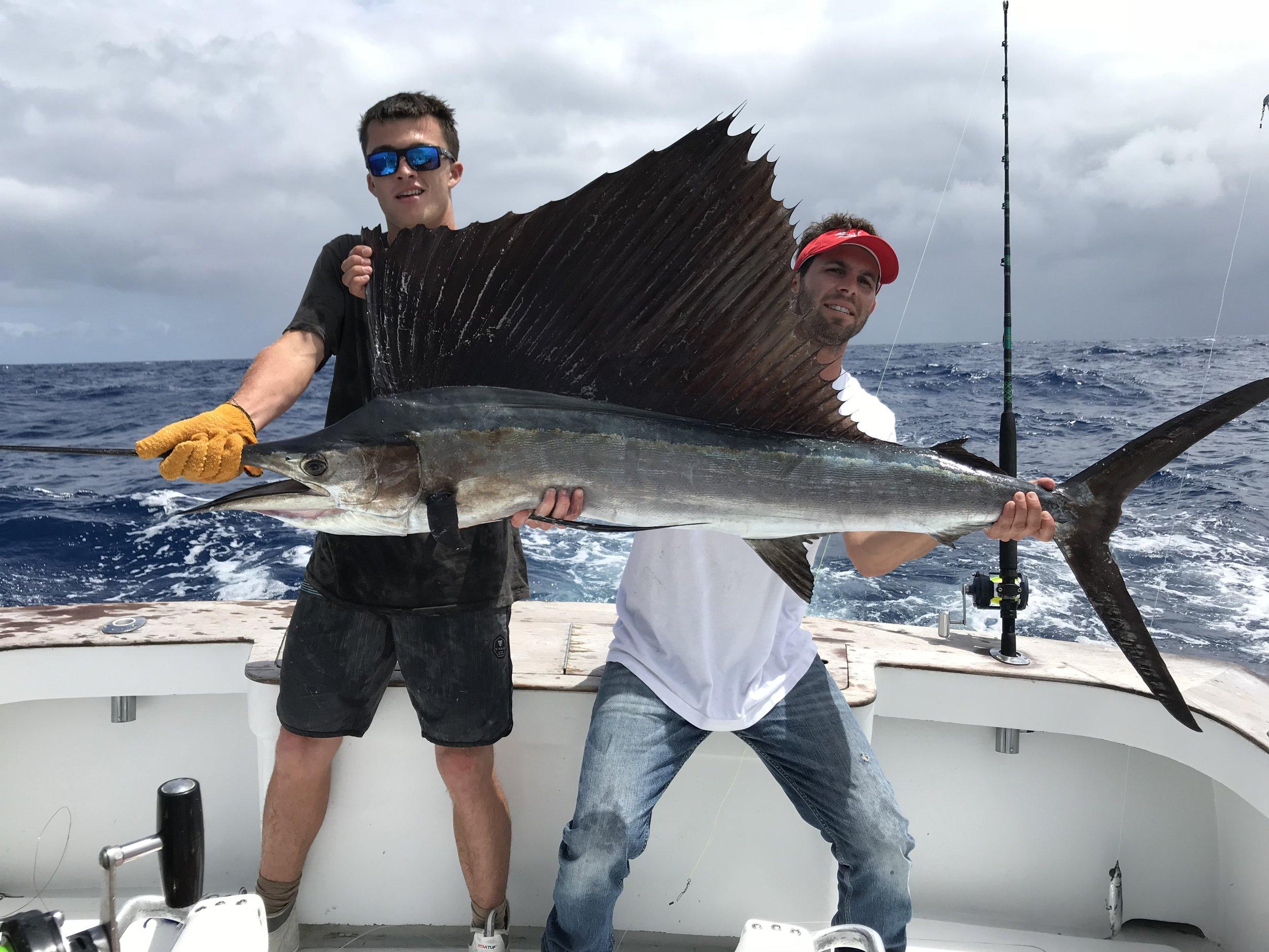 sailfish-st-augustine-drop-down.jpeg