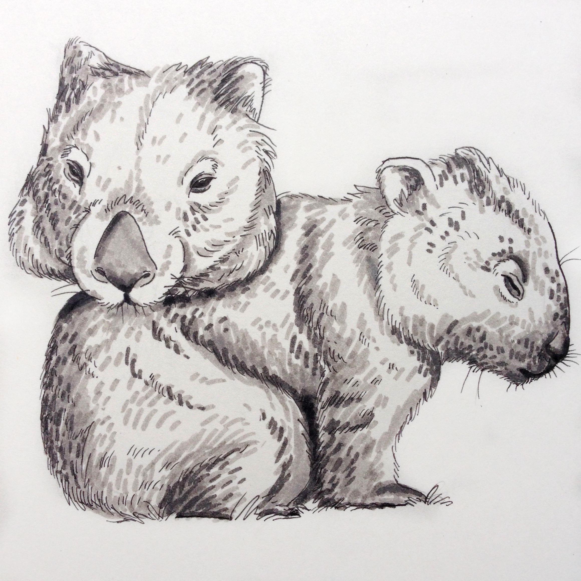 Day Three - Wombat