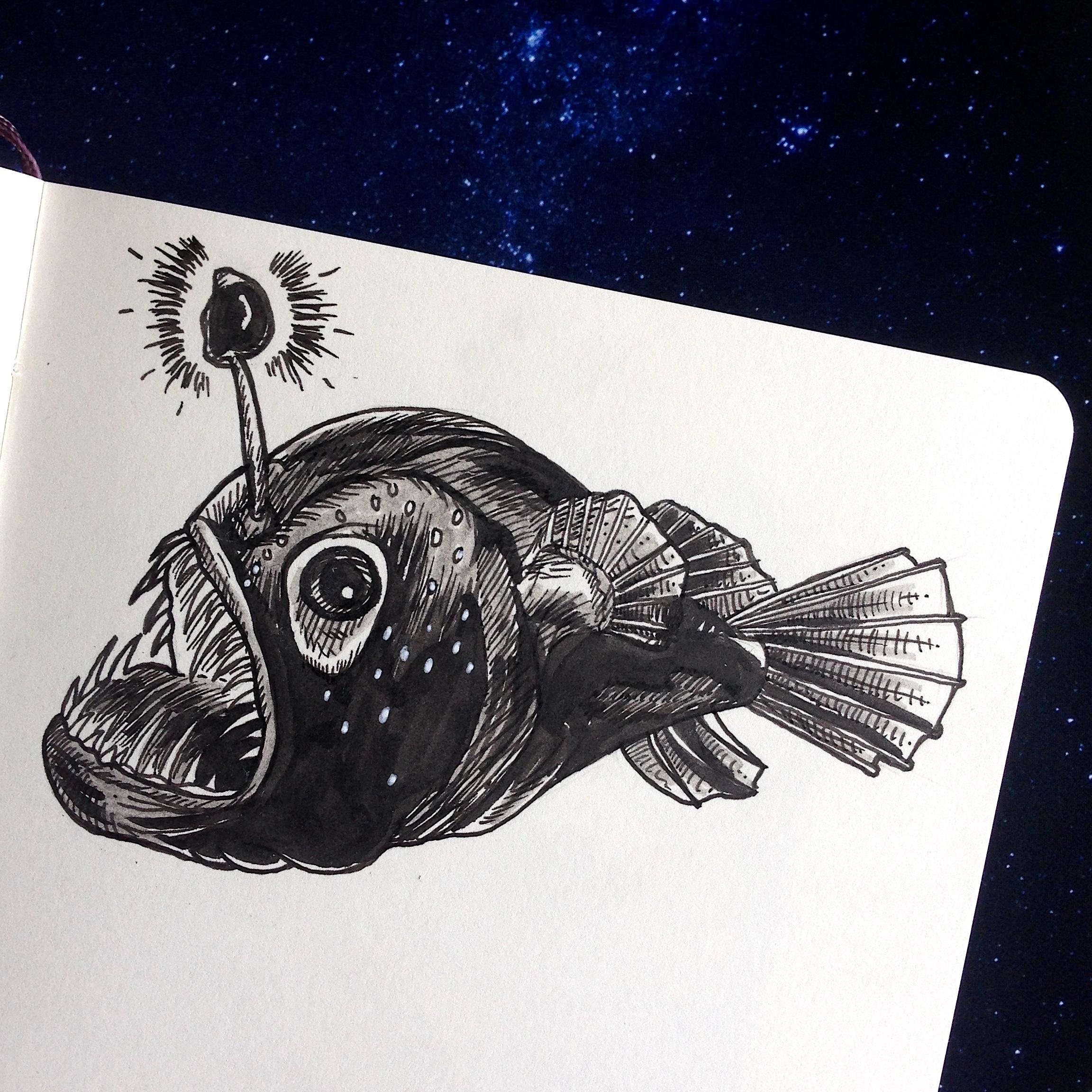 Day Fourteen - Lanternfish
