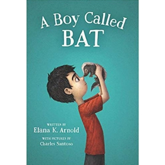 Books for Advanced Readers, second grade, A Boy Called bat