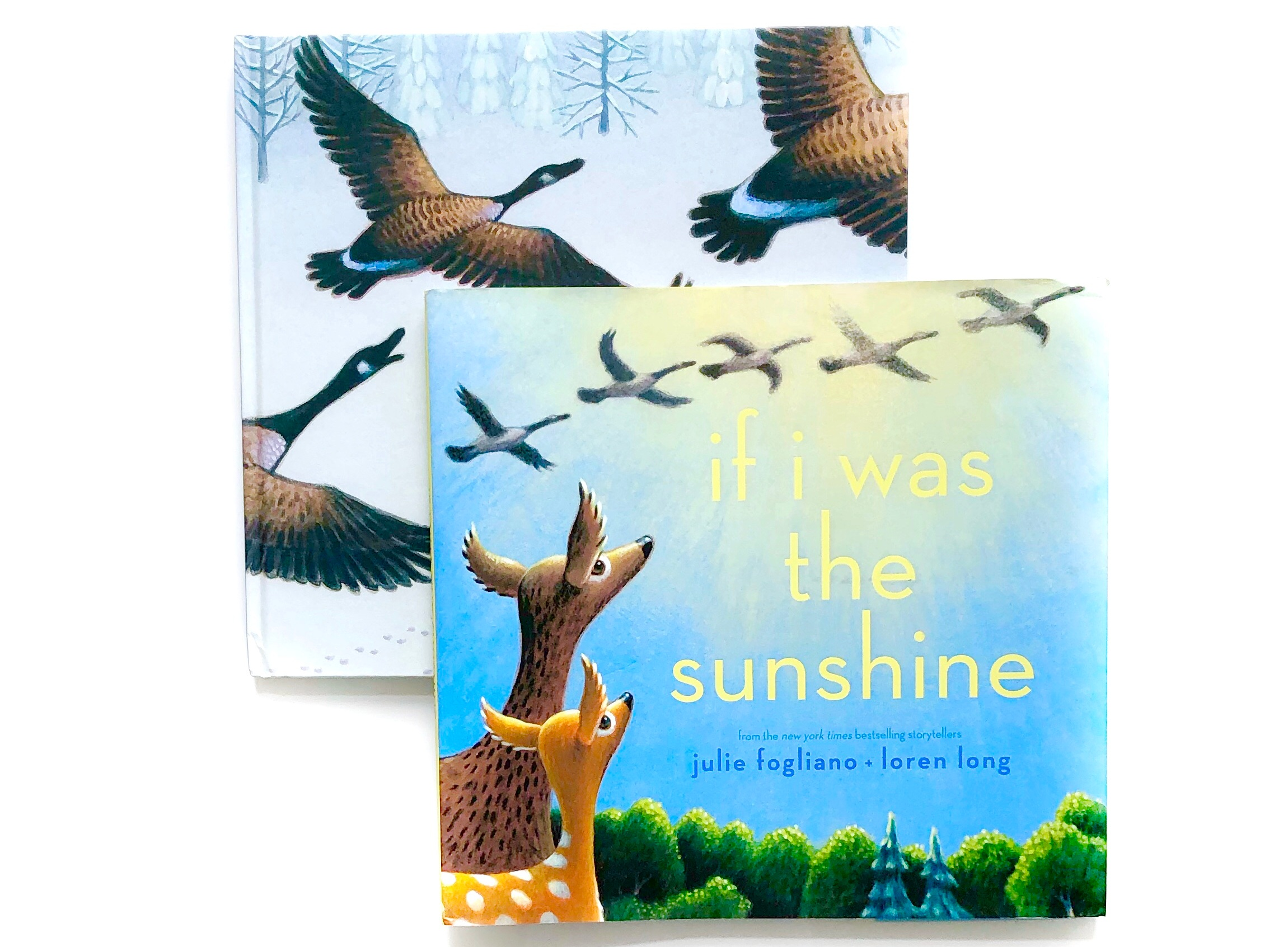 If I was the Sunshine, by Julie Fogliano and Loren Long