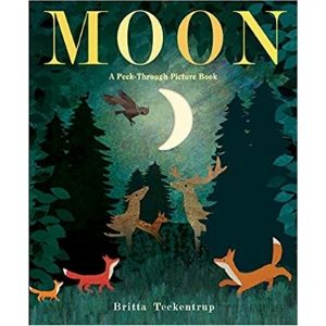 Children's Books About Space, Moon a Peek Through Picture Book.jpg