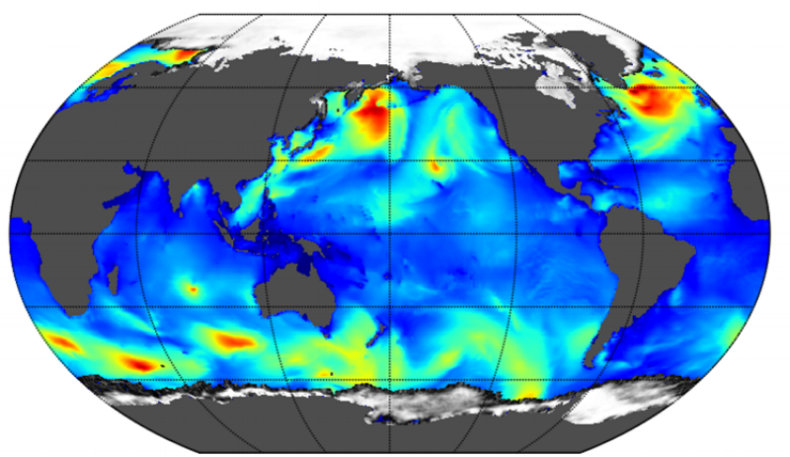 Sea surface wave significant height snapshot from MetOcean Solutions' dataset.