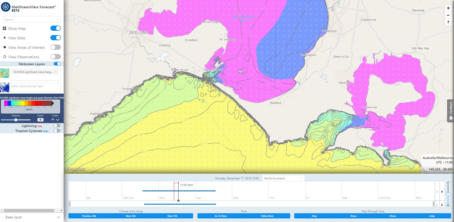 Map layer of SCHISM significant wave height and peak direction forecast. Image from MetOceanView.