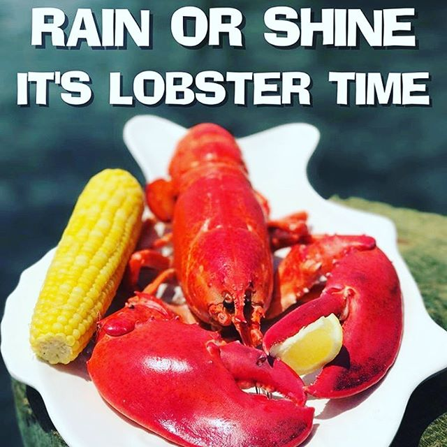 🦞🦞Lobster Madness Today June 20 & Tomorrow June 21. $10 OFF any Steamed or Stuffed Lobster! 1 1/2 LB's and Up. Starts at 3 PM Today. See ya at Red's! #redslobsterpot #lobster #freshseafood #locallycaught #foodphotography #foodie #njeats #foodstagram