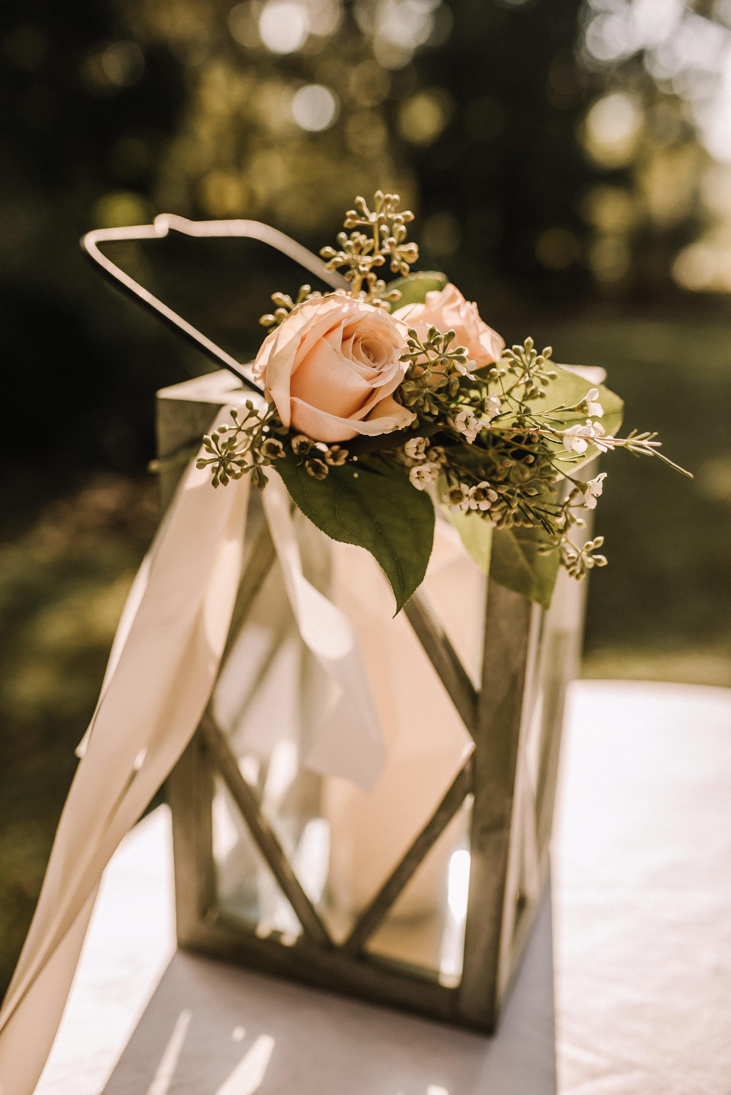 O'Brien-Wedding_Botanic-Gardens_Ashley-Benham-Photography-275.jpg