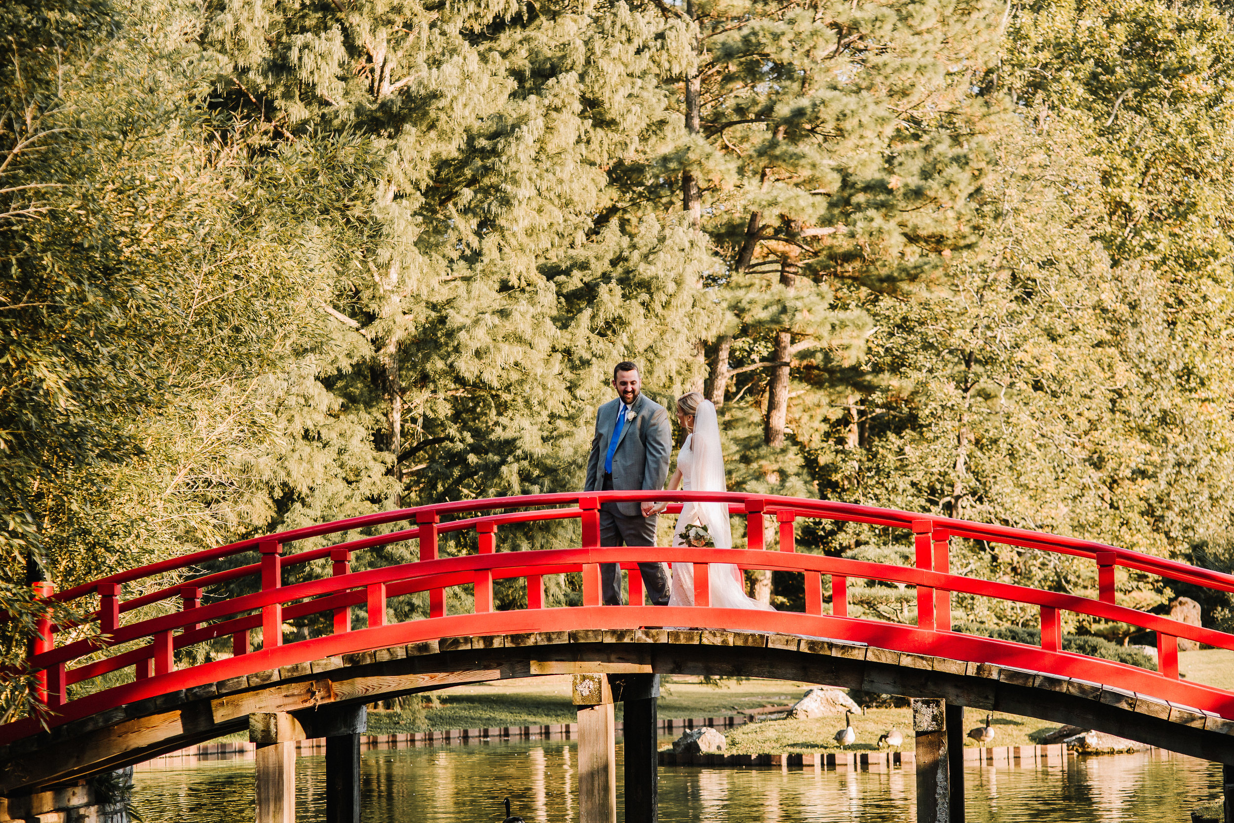 O'Brien-Wedding_Botanic-Gardens_Ashley-Benham-Photography-484.jpg