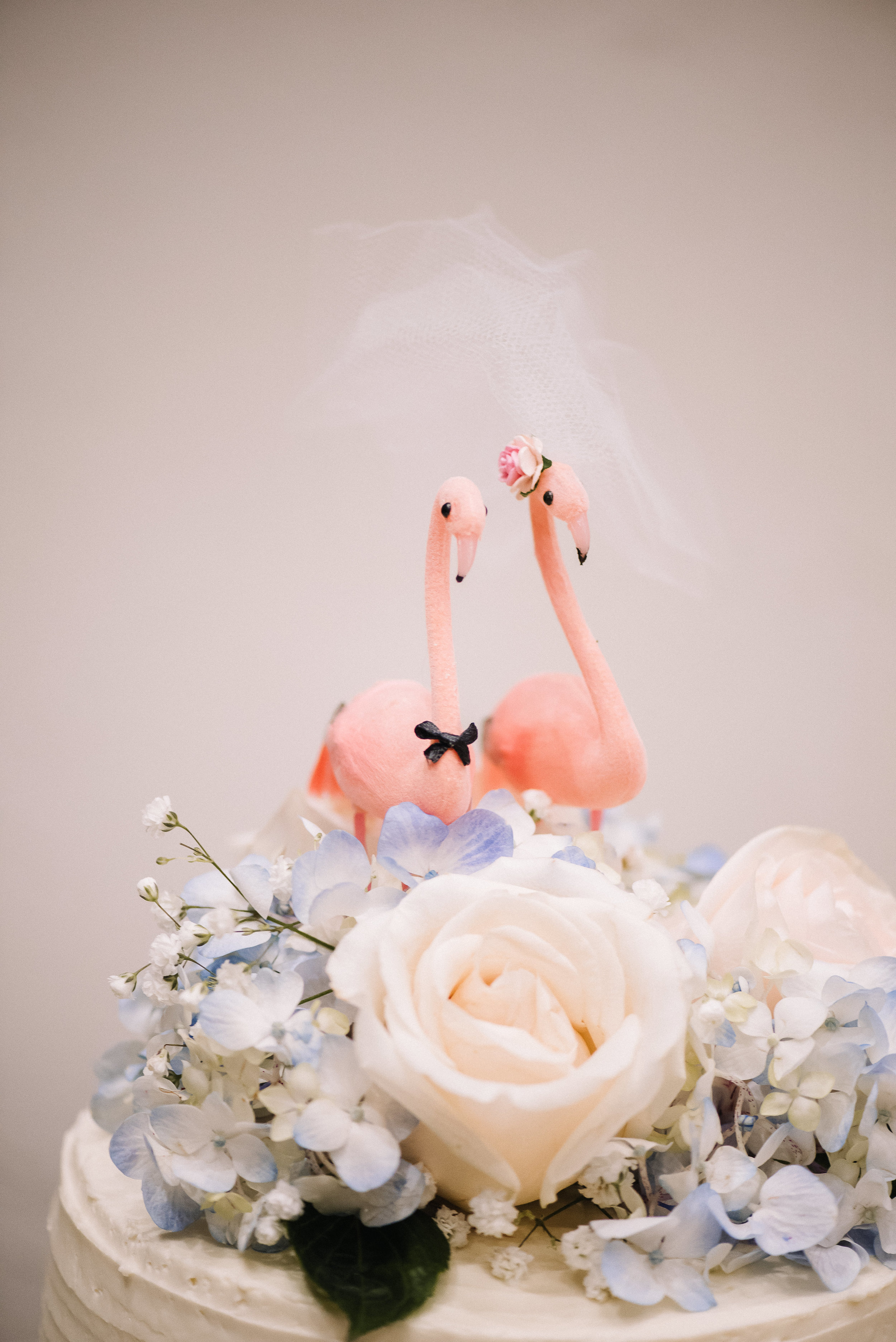 Smith Wedding_Memphis Zoo_Ashley Benham Photography-802.jpg